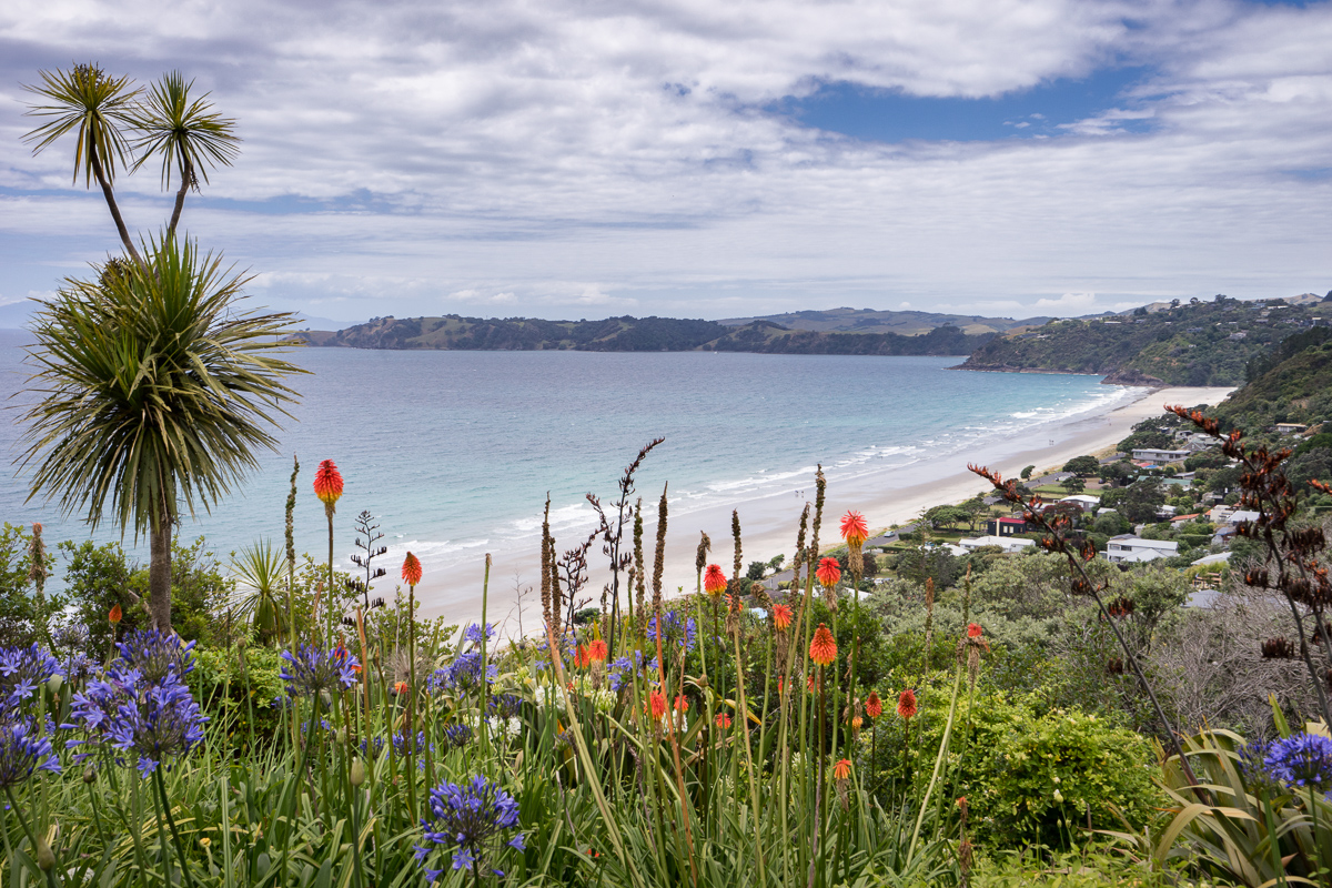 Landscape photo of Onetangi Beach, Waiheke Island, New Zealand