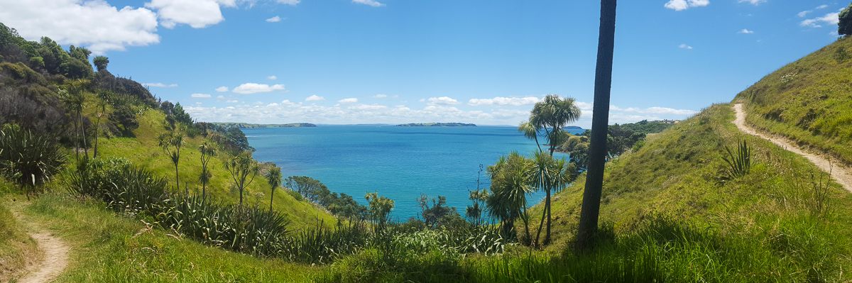 Panoramic photo on a walking track around Waiheke Island, New Zealand