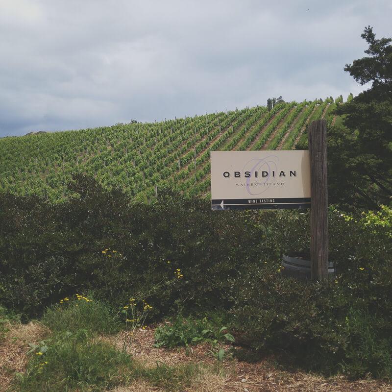 waiheke-island-wine-tasting-nz02