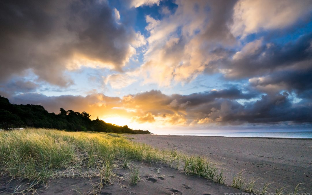 March 2016 Desktop Wallpaper – Oakura Beach, New Zealand