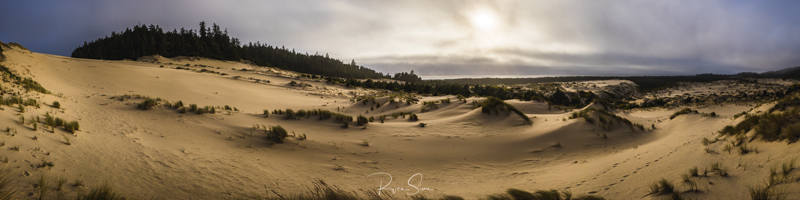 Oregon Dunes National Recreation Area Oregon Coast, USA