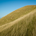 Travel landscape photo from Castle Point, Wairarapa, New Zealand