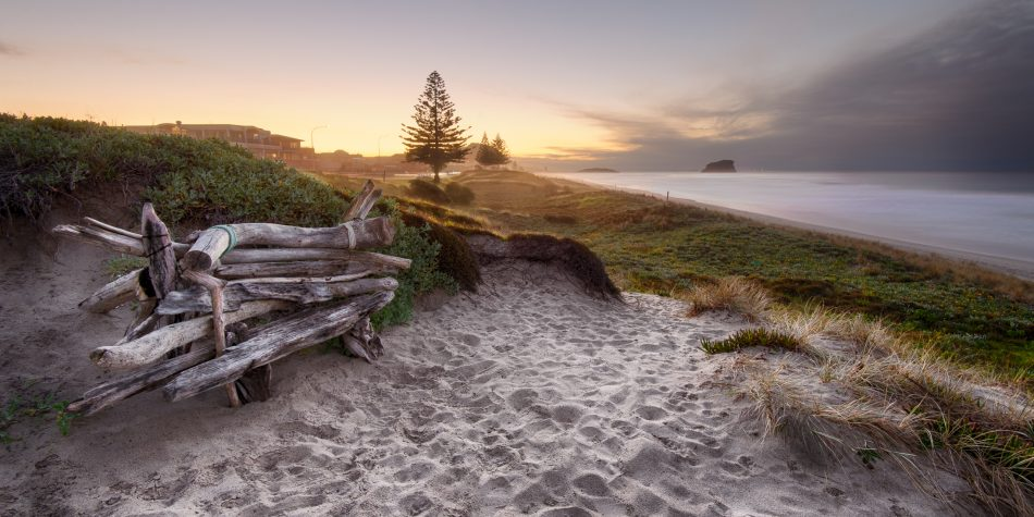 Driftwood bench seat on sand dunes overlooking Mount Maunganui Beach at sunset
