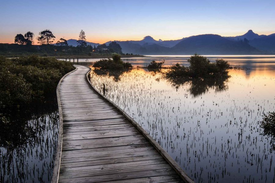 Landscape photo boardwalk Pauanui Waterways Coromandel Peninsula NZ