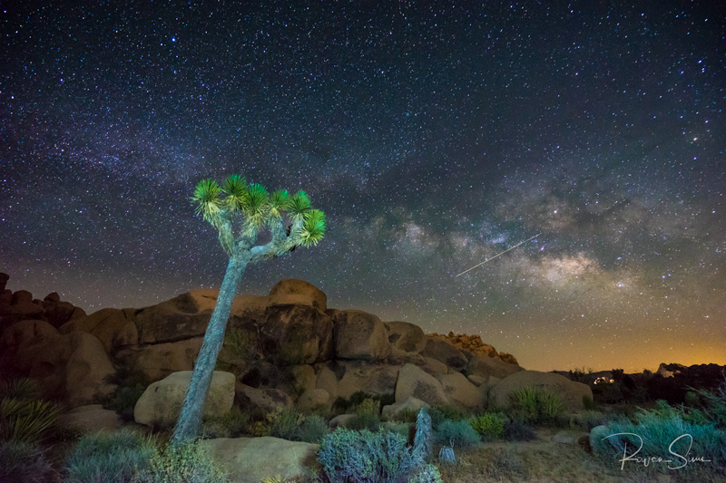 Milky Way stars Joshua Tree National Park California USA