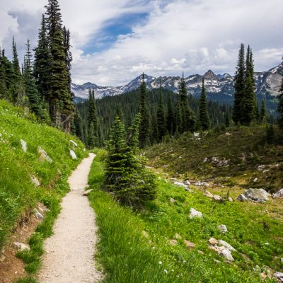 Hiking trail on Mount Revelstoke National Park, British Columbia, Canada