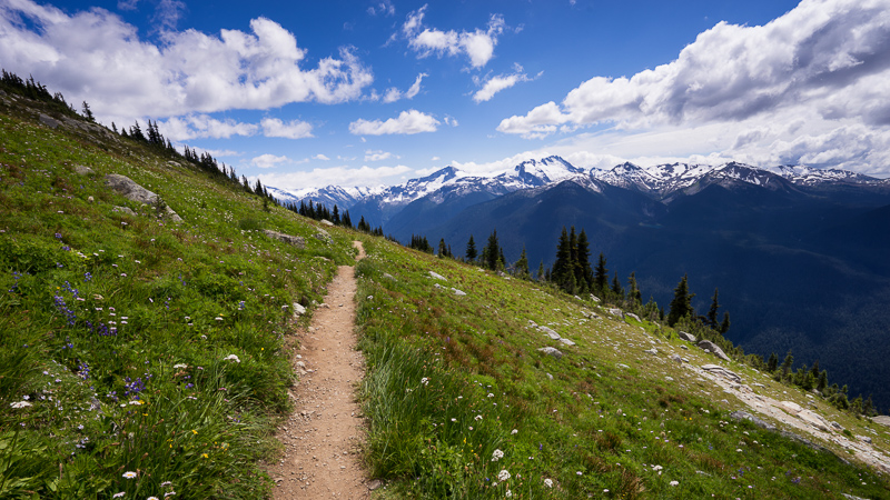 Hiking trail on Blackcomb Mountain, Whistler, British Columbia, Canada