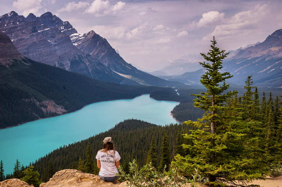 Peyto Lake Canada Lake Photography Tips
