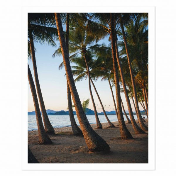 Photo print of sunrise over palm trees on the beach at Palm Cove, QLD, Australia